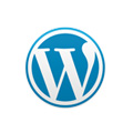 WordPress Performance Webhosting